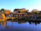 【特惠线路】本州双古都温泉美食6日经典之旅(无锡往返)