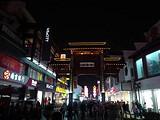 [南京二日]<中山陵-雨花台-夫子庙--玄武湖-阅江楼