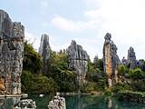 【昆大丽泸】昆明(石林)、丽江(雪山大索道)、泸沽湖
