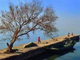 [苏州一日]苏州天平山赏枫 白马涧龙池 太湖蜜桔采摘