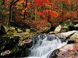 [浓情深秋·爱在庐山]庐山疗养、赏红枫、纯玩度假休闲七日