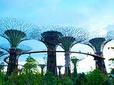 【马上新动】新加坡-马六甲-云顶-吉隆坡上海吉祥4晚6日游