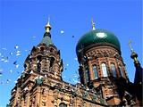【漠河北极光】漠河深度全景/哈尔滨/索菲亚教堂/北极村