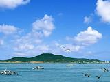 【青岛】大乳山(沙滩王国)、威海(刘公岛)、烟台等5日游