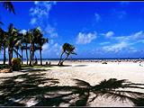 【浪漫海岛】北海银滩、涠洲岛、鳄鱼山、滴水丹屏、百年老街