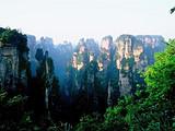 长沙、韶山、张家界森林公园(袁家界+杨家界+金鞭溪)
