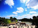 [扬州二日] 瘦西湖-大明寺-个园-东关街