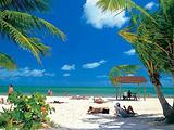 小环岛精华游+珍珠港+市区游览+威基基海滩 免费接送机服务