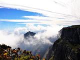 冬季 南非(太阳城+开普敦+酒庄)8天彩虹之旅