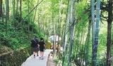 龙门温泉大观园两日游