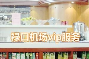 南京祿口機場vip通道貴賓休息室要客接送機服務