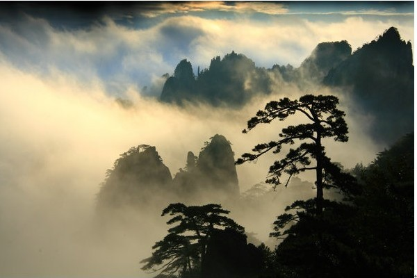 早餐后,乘车赴黄山风景区,游览世界自然和文化双遗产,世界地质公园