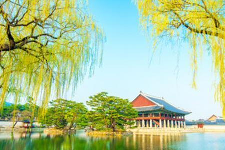飞龙号游轮-韩国首尔5日