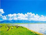 特色内蒙 内蒙古科尔沁草原、沙漠、大青沟原始森林品质双飞4日