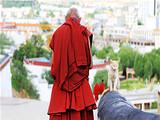 西藏4飞9日
