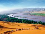 畅游宁夏 西部影城、沙坡头、贺兰山东麓葡萄酒庄双飞4日