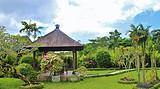 【限时特卖】巴厘岛、乌鲁瓦图情人崖、库塔海滩、风情乌布6日