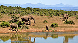 南非8日游