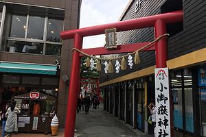 日本东京5天自由行