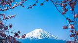 【赏樱花】日本福冈 熊本 别府4日游