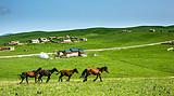 丝绸之路 乌鲁木齐 天池 吐鲁番 嘉峪关 兰州双飞7日