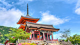 【东阪】日本本州全景5+1日游