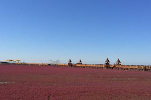盘锦红海滩风景廊道1日游