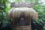 长隆飞鸟乐园+欢乐世界+野生动物园 3日游
