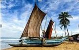 樂享錫蘭—斯里蘭卡6天5晚(深起廣止UL )