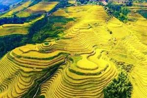 桂林+漓江阳朔+龙脊梯田5日游