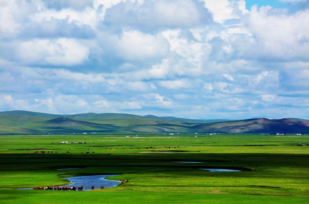 【原创】水草丰美的呼伦贝尔草原