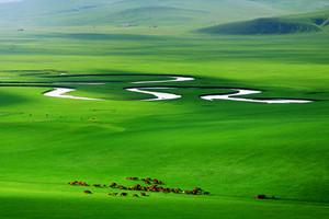 精品小团·呼伦贝尔草原莫日格勒河白桦林2日游