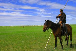 呼倫貝爾草原海拉爾莫日格勒河額爾古納濕地白樺林4日游