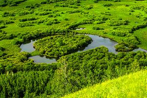 呼伦贝尔大草原海拉尔白桦林恩和室韦黑山头满洲里深度全景6日游