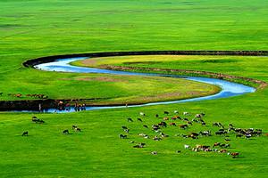 呼伦贝尔大草原海拉尔黑山头满洲里蒙古包体验深度经典4日游