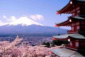 日本大阪+京都+东京8日7晚半自助游(3钻)·花见日本温泉美