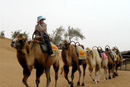 吐鲁番 鄯善沙漠一日游