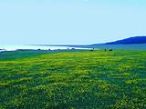 童话牧场草原王国天山公路八日行