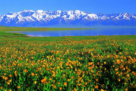 南疆+北疆9日游