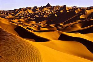 新疆古尔班通古特沙漠穿越八日游