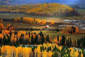 新疆喀纳斯 禾木 白哈巴村 全景 摄影线路8日