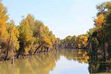 南疆A线:大美新疆南疆旅游专列-库尔勒 库车喀什7日游