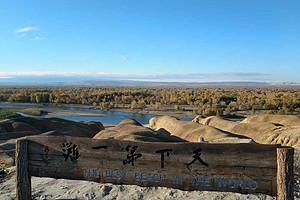 新疆喀纳斯 五彩滩 魔鬼城 野马古生态园 天池房车8日游
