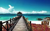海岛新玩家 海南三亚西岛畅玩一整天,南山天涯海角双飞6日游