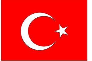土耳其个人旅游签证单次电子签证