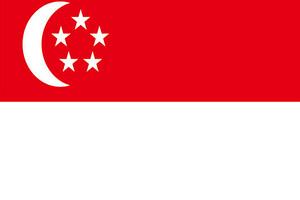 新加坡个人单次旅游签证可加急