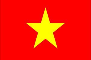 越南个人旅游签证(单次)可加急