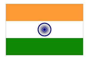 印度个人旅游签证电子签