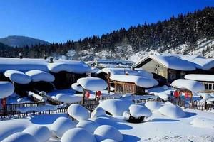 狂欢雪乡黑龙江双峰林场中国雪乡2日游雪乡景区 雪韵大街雾凇林