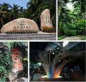 海南假日-海口双飞五日游(含分界洲岛玫瑰谷)郑州到三亚旅游